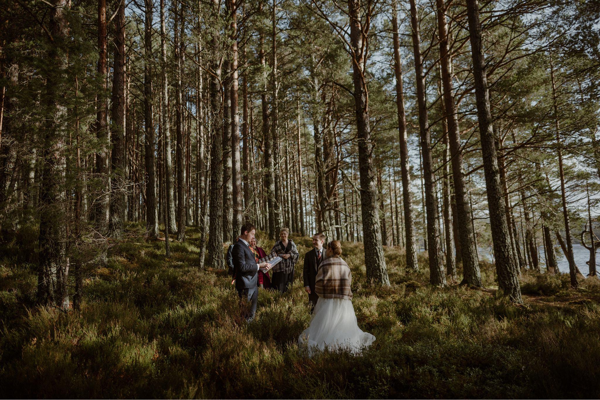 Wedding couple in the Caledonian pine forest Scotland