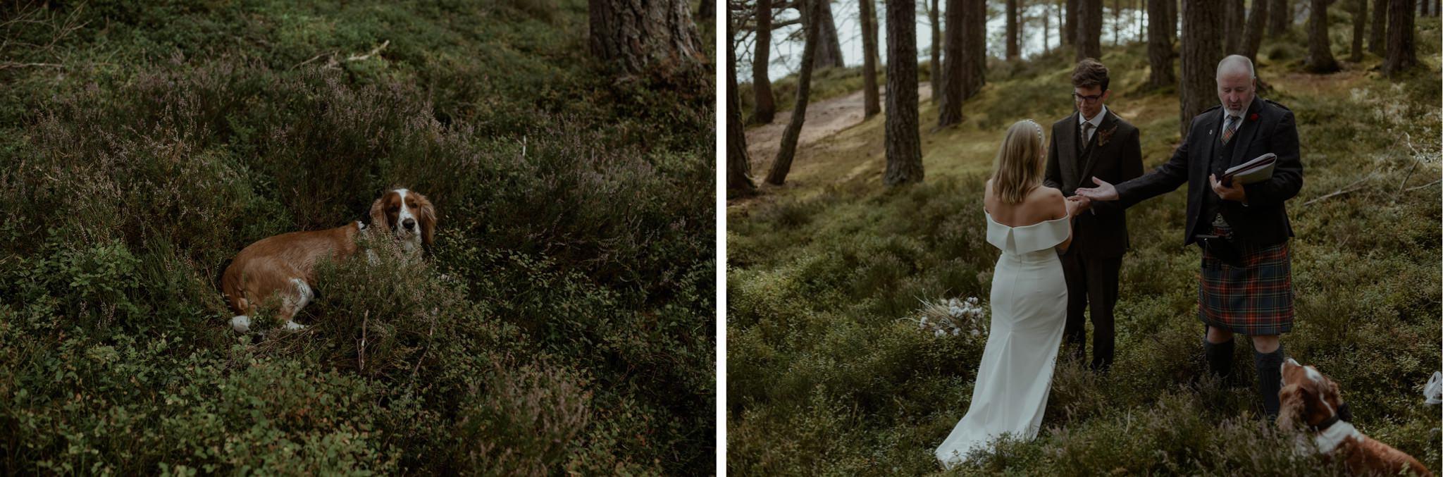 Outdoor elopement wedding ceremony in woods in the Cairngorms