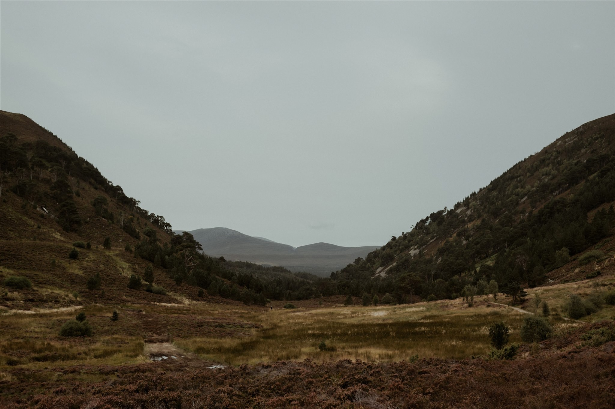 Glen More from Ryvoan in the Cairngorms National Park