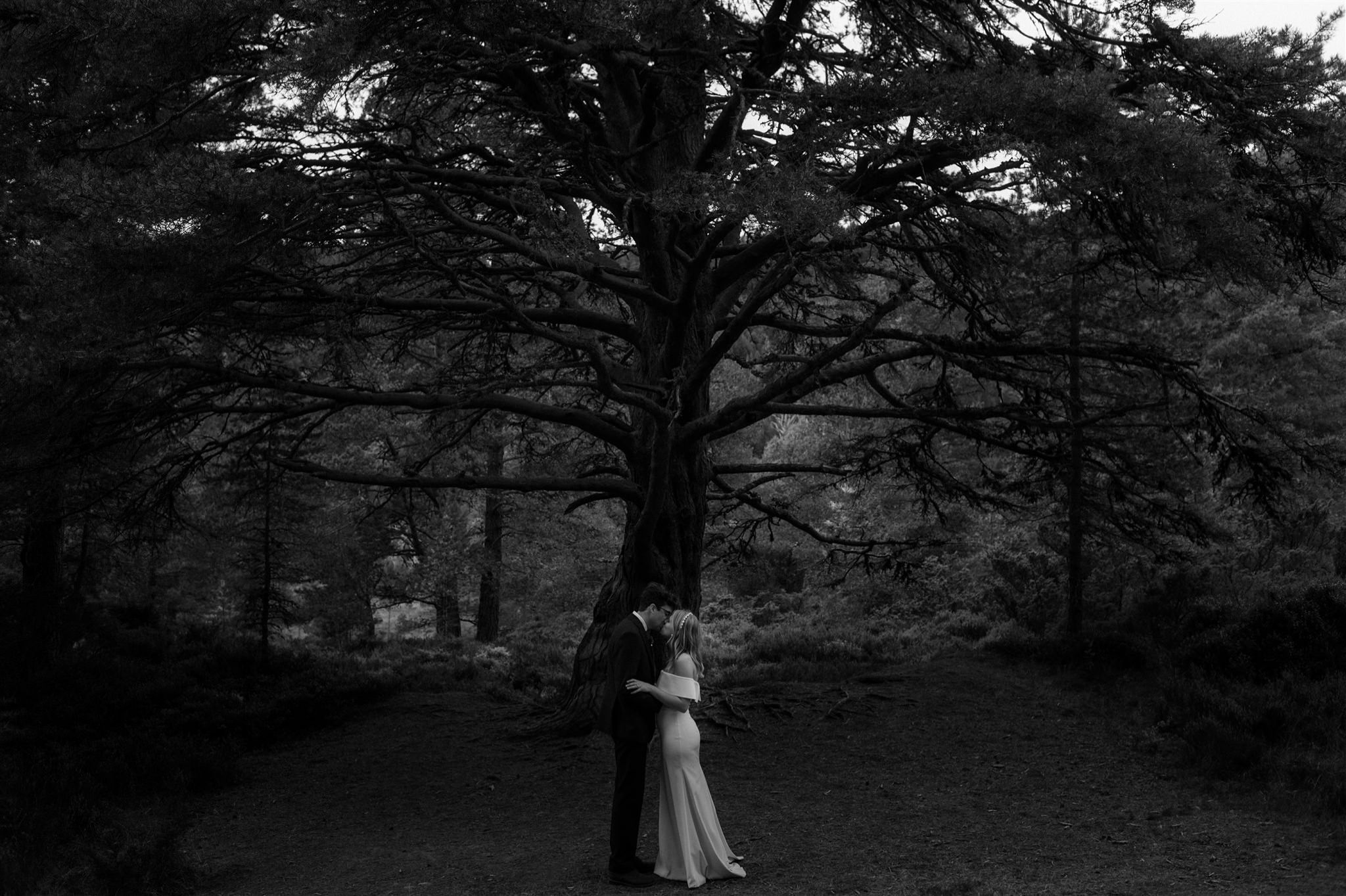 Groom and bride kissing under a giant Douglas Fir in Glen More Cairngorms National Park Scotland